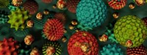 Allergiebearbeitung